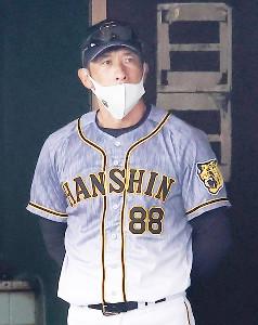 ベンチから試合を見つめる矢野燿大監督