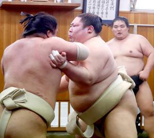 朝稽古で大栄翔(左)と相撲を取る再入幕の剣翔(右)