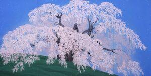 福島県三春町 《晴和三春の瀧櫻》 2006年/北野美術館