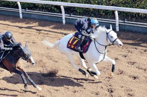 2馬身追走から半馬身先着に持ち込んだソダシ(右)