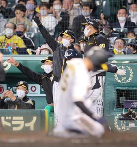 4回2死一、三塁、糸原の適時二塁打でガッツポーズする矢野監督(後方右から二人目)