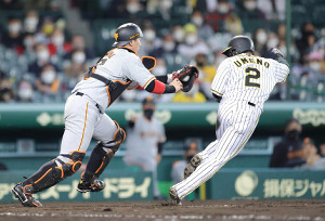 8回1死二、三塁、陽川の一ゴロで本塁を狙った三塁走者の梅野(右)はタッチアウトとなる(捕手・炭谷)