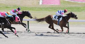 1着は藤田菜七子騎乗のオパールシャルム(右)と2着は永島まなみ騎乗のランランウイング(左から2頭目)。女性騎手のワンツーフィニッシュになった(カメラ・池内 雅彦)