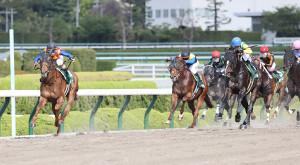 馬群から抜け出し1着でゴールするテーオーケインズ(左)(カメラ・馬場 秀則)