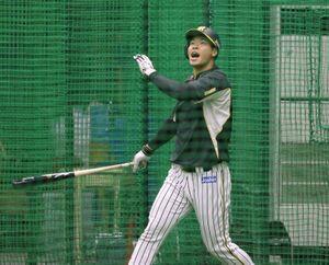フリー打撃の合間に雄叫びを上げる佐藤輝