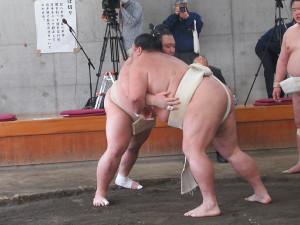 合同稽古で三番稽古をした大関・朝乃山(左)と小結・御嶽海(代表撮影)
