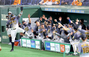 1回2死、マルテ(左)が左中間へ先制ソロ本塁打を放ち、阪神ナインとベンチ前でポーズを決める(カメラ・竜田 卓)
