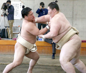 合同稽古で逸ノ城(右)と相撲を取る若隆景(代表撮影)