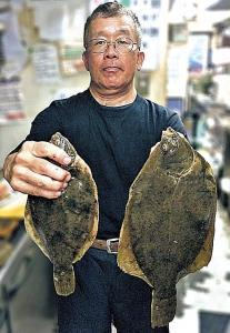 良型のマコガレイを釣った中村さん