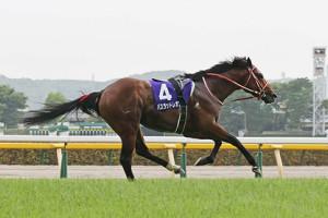 落馬競走中止のバスラットレオンはカラ馬となってゴールに向かう