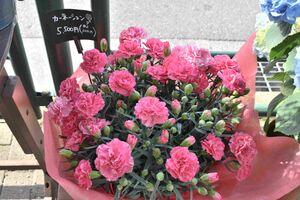 母の日のため、花屋の店先に並ぶカーネーション