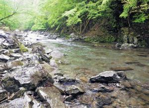 良型アマゴがよくヒットした川原樋川浅瀬のポイント