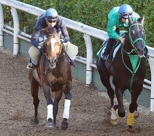 武豊騎手を背に坂路を併せ馬で追い切るアリストテレス(左)