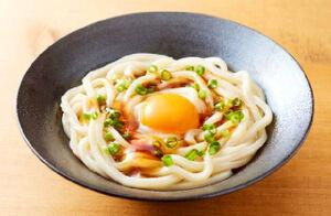 冷凍麺「DNS パワーヌードル うどん フローズン プロ」の調理例