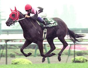 95年の札幌3歳Sを武豊騎手を背に快勝したビワハイジ