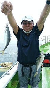 二宮沖で釣れたアジ。良型がそろう(平安丸提供)