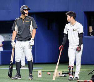 試合前練習の合間に、中野拓夢(右)と談笑する佐藤輝明