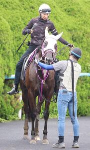 横山和生騎手とコンビを組むエイティーンガール