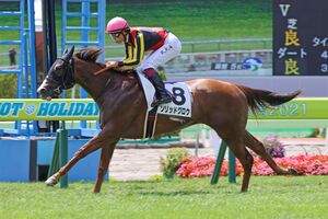 ソリッドグロウが後続に7馬身差をつけデビュー勝ち(カメラ・高橋 由二)
