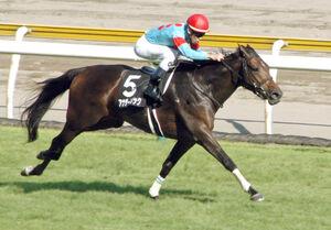 2馬身半差をつけて快勝したアナザーリリック(カメラ・恩田 諭)