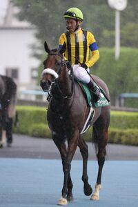 マジックキャッスル(戸崎圭太騎手)はゴール寸前で差され2着惜敗