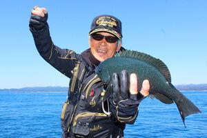 串本大島・樫野の「小ガツオ」で良型グレを仕留めた藤原さん。秋磯でも良型と出合えるチャンスはある