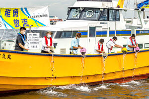 羽田沖にはカサゴの稚魚2万尾が放流された