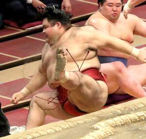 照ノ富士に寄り切りで敗れ、土俵下に転落した高安