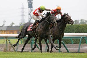 ステラヴェローチェ(左)が、不良馬場をものともせず、ゴール前でレッドジェネシスを半馬身差交わす(カメラ・高橋 由二)