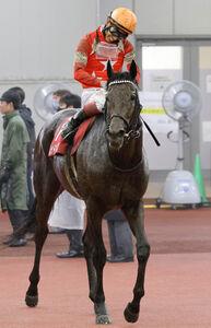 半馬身差で勝利を逸したレッドジェネシスの藤岡康太騎手(カメラ・高橋 由二)