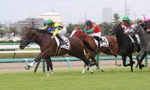 勝ったサインオブサクセス(左手前)の内から迫ったロードレゼル(奥の青帽)