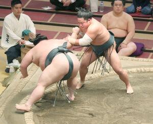 武将山を破った翠富士(右)